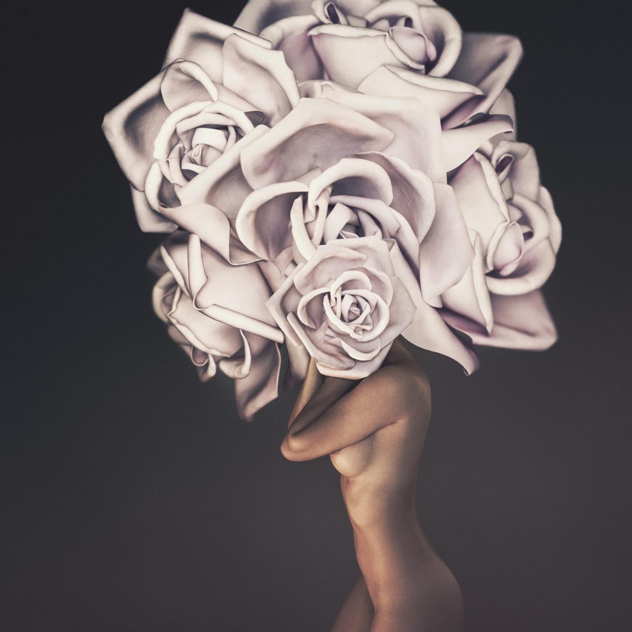 Flowerhead 2018